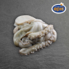 Octopus Philippines, cleaned, bulk